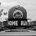 Shea Stadium Home Run Apple In Black And White by Rob Hans