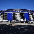 Shea Stadium - New York Mets by Frank Romeo