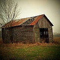Shed In Pasture by Michael L Kimble