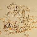 Sheep And Lambs by Mike Jory