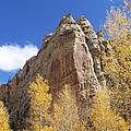 Sheep Creek Canyon Wyoming 2 by Rachel  Butterfield