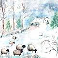 Sheep In Snow by Christine Lathrop