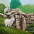 Sheep On A Rock Wall by Hilary England