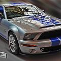 Shelby Gt500kr 2008 by Dragan Kudjerski