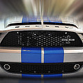Shelby In Action by Dragan Kudjerski