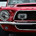 Shelby Mustang by Gordon Dean II