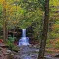 Sheldon Reynolds Falls And Kitchen Creek by Rich Walter
