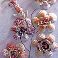 Shell Flowers  No 1  by Karin  Dawn Kelshall- Best