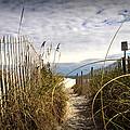 Shell Island Beach Access by Phil Mancuso