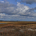 Shell Island To Figure Eight Panorama by Paulette B Wright