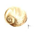 Shell Painting Watercolor Art Print by Joanna Szmerdt