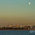 Shell Refinery by Robert Bales