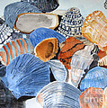 Shells On The Beach by Sandy McIntire