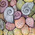 Shells by Panna Paintings