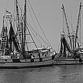 Shem Creek Shrimpers - Black And White by Suzanne Gaff