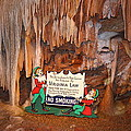 Shenandoah Caverns - 12127 by DC Photographer