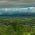 Shenandoah Green Valley by Lara Ellis