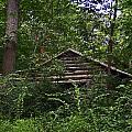 Shenandoah Log Cabin by Guy Shultz