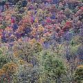 Shenandoah National Park 2 by Lee Kirchhevel
