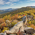 Shenandoah National Park Mary's Rock  by Pierre Leclerc Photography
