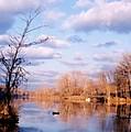 Shenandoah River In Late Autumn by Laura Corebello