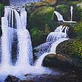 Shenandoah Valley Falls by Bill Brown