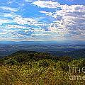 Shenandoah Valley by Tom Gari Gallery-Three-Photography