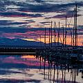 Shilshole Olympic Mountains Sunset Vertical by Mike Reid