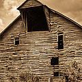 Shingle Barn Sepia 1 by Douglas Barnett