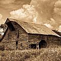 Shingle Barn Sepia 2 by Douglas Barnett