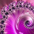 Shiny Pink Fractal Spiral by Matthias Hauser