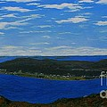 Ship Harbour From Sugarloaf Hill by Barbara Griffin