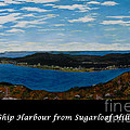 Ship Harbour From Sugarloaf Hill - Historic Town - Atlantic Charter by Barbara Griffin
