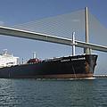 Ship Under Sunshine Skyway Bridge by Bradford Martin