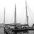 Ships Of Volendram by Pravine Chester