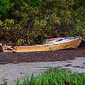 Shipwreck by Bill Cannon