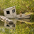 Shipwreck Silver Springs Florida by Christine Till