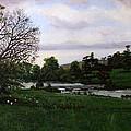Shobrooke Park  Crediton  Devon by Mackenzie Moulton