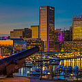 Shooting Purple In Baltimore by Dennis Dame