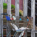 Shopping Cart by Peter Tellone