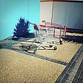 Shopping Trolleys  by Les Cunliffe