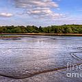 Shore Line by Svetlana Sewell