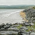 Shores Of Ireland by Brenda Brown