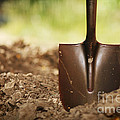 Shovel In Soil by Konstantin Sutyagin