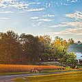 Showcase Barn And Farm by Randall Branham