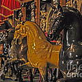 Showcase Of Royal Horses by Elvis Vaughn