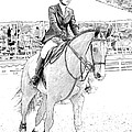 Showjumper by Alice Gipson