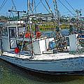 Shrimp Boat - Southern Catch by Rebecca Korpita