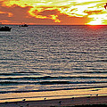 Shrimp Boats And Gulls Over Sea Of Cortez At Sunset From Playa Bonita Beach-mexico by Ruth Hager