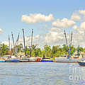 Shrimp Boats In Georgetown Sc by Dale Powell